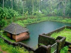 Classic Pond in kerala with rustic looking resting and changing area