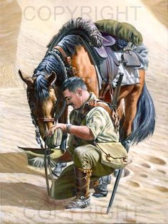Artist Ron Marshall's painting, A Drop for my Mate, shows a soldier from The Light Horse Brigade using his slouch hat as a water vessel to provide his horse with a drink. Military Photos, Military Art, Military History, Anzac Soldiers, Ww1 Photos, Ww1 Pictures, Anzac Day, Remembrance Day, World War One