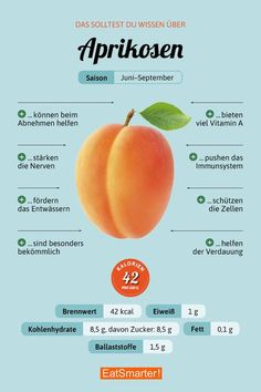 apricot - You should know about apricots eatsmarter.de - apricot – You should know about apricots eatsmarter. Healthy Food List, Healthy Diet Plans, Nutrition Plans, Healthy Eating, Healthy Recipes, Complete Nutrition, High Fiber Cereal, Food Facts, Eat Smarter