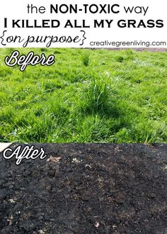 Easy, non-toxic way to kill grass without back breaking labor. I need to remember this for later!