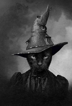 'The Cat In the Magical Hat' Limited Edition Print of 100 Collage by Adrian Higgins