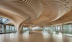 Het golvende plafond laat zien wat er met Kerto LVL mogelijk is (Foto: dECOi Architects)