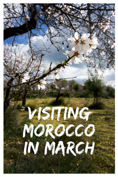 The weather in Morocco in March begins to turn making this time of year one of the best to visit Morocco. Find out where to go and what to see this month! via @marocmama