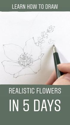 Learn to draw realistic flowers in less than a week! Join me and hundreds of other artists as we practice our craft, gain trust, and pursue our dreams together. I can not wait to get started and see how quickly you learn to draw floral illustrations. Art Floral, Floral Drawing, Drawing Flowers, Painting Flowers, Flower Drawings, How To Draw Flowers, Drawing Lessons, Drawing Tips, Art Lessons