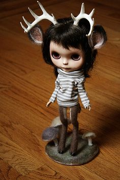 the whole kit and kaboodle by sammydoe, via Flickr
