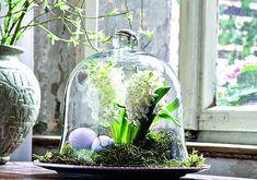 Glasglocken dekor auf pinterest kaffee dekorationen und - Glasglocke dekorieren ...