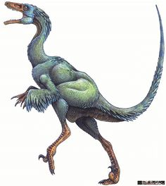 Feathered Dinosaurs - Troodon