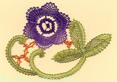 FLORES-květy - heli - Picasa Web Albums