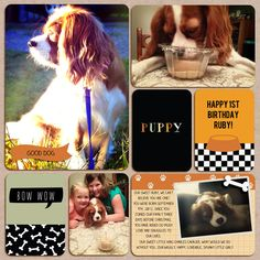 credits: Becky Higgins Digital Project Life Dogs theme pack template: Lori Whitlock