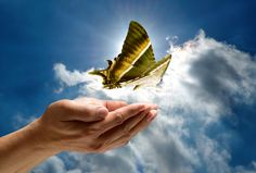 A butterfly on a breeze, delicate, enticing, and just out of reach—that is what words sometimes feel like for me as a writer. I chase their lead only to lose track of where I started. The best words come from …