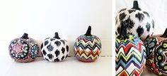 Different colors and designs on punkins