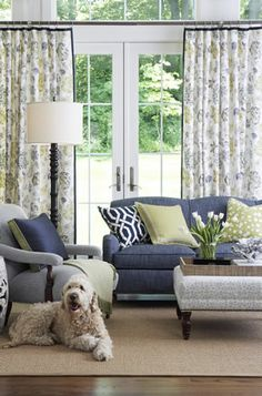 blue couch with gray chair and green accents