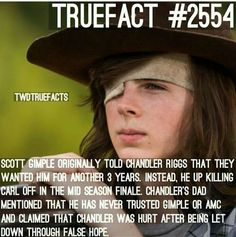 Anyone hate Gimple as much as I do for killing Chandler off? Tha Walking Dead, Walking Dead Coral, Walking Dead Facts, The Walk Dead, Walking Dead Season 8, Walking Dead Zombies, Talking To The Dead, Chandler Riggs, Carl Grimes