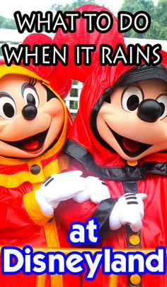 All about what to do when it rains at Disneyland. Attractions to stay dry in, shows to see, and more ideas. Pin this just in case. Viaje A Disneyland Paris, Disneyland World, Disneyland California Adventure, Disneyland Vacation, Disneyland Tips, Disney Tips, Disney Fun, Disney Vacations, Disney Parks