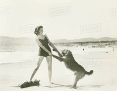 Frolicking on the beach Royalty-free stock photo
