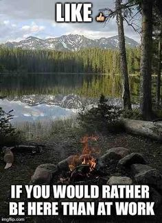I say lets go camping. Whos with me? #outdoors, #campinggear, #fishinggear, #ClimbingGear