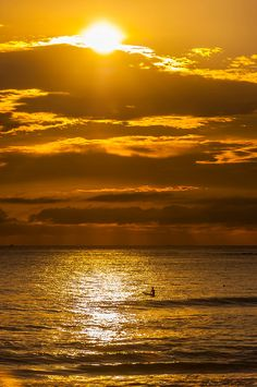 Surfers at sunrise, Manly Beach, Sydney, New South Wales, Australia Sunset Images, Beach Images, Sunset Photos, Manly Beach, Twilight Photos, Shadow Silhouette, Ocean Photos, Dawn And Dusk, Best Photographers