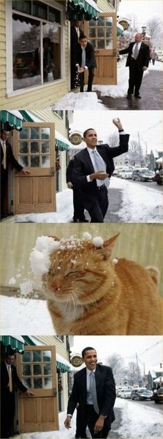 President Obama throws a snowball at a ginger cat.  Thanks, Photoshop.