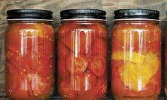 Zavařování rajčat: recepty, návody, tipy Korn, Salsa, Salsa Music