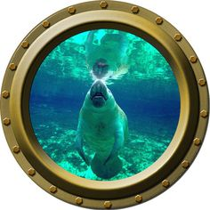 Happy Manatee Porthole Vinyl Wall Decal by WilsonGraphics on Etsy, $13.00