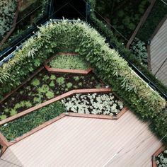 Vista desde la altura de un de nuestros jardines
