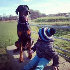 Lycos and my son