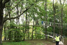 Tetsuo Kondo /// A Path in The Forest   Kadriorg Park @ Tallinn, Estonie