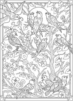 Creative Haven Birds and Blossoms Coloring Book @ Dover Publications Detailed Coloring Pages, Bird Coloring Pages, Adult Coloring Book Pages, Mandala Coloring Pages, Coloring Books, Coloring Pages For Grown Ups, Free Adult Coloring, Colorful Pictures, Dover Publications