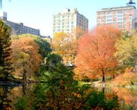 Things to do in New York City | What's on NYC | Time Out New York