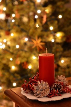 Christmas Tree Gif, Christmas Lights Background, Christmas Mood, Christmas Pictures, All Things Christmas, Merry Christmas, Christmas Decorations, Christmas Lockscreen, Cute Christmas Wallpaper