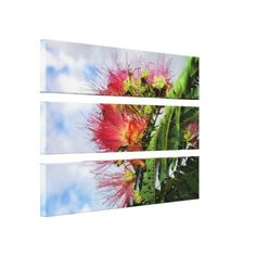 Mimosa Flowers with Blue Sky Stretched Canvas Print http://www.zazzle.com/mimosa_flowers_wrapped_canvas-192308567209422292?gl=Susang6=238418686999709759