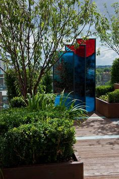 Chelsea Creek - copyright St George Plc : Modern garden by Aralia