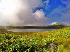 Flores, Azores: the most beautiful places you must see Most Beautiful, Beautiful Places, See World, Travel Photos, Waterfall, Island, Mountains, Nature, Pictures