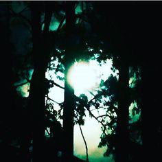 Luna, lunera 👣🦂 Buenas Nocheshttps://www.instagram.com/p/BM2e5w9DcFD/