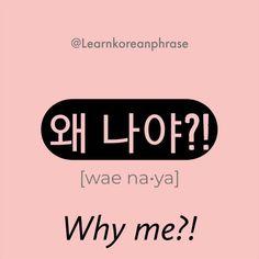 "Learn to say like Korean native speakers 🇰🇷🙆♀️ ""Why me? 왜 … Learn to say like Korean native speakers Korean Slang, Korean Phrases, Korean Quotes, Korean Verbs, Korean Words Learning, Korean Language Learning, Learn Korean Alphabet, Learning Languages Tips, Korean English"