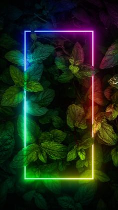 Neon RGB Glow Foliage Nature - IPhone Wallpapers