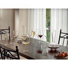Vinea 10.25 oz. Moscato/Spumante Champagne Glass (Set of 2)