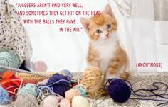 New Parent Quotes, Parenting Quotes, New Parents, Famous People, Author, Cats, Animals, Gatos, Animales