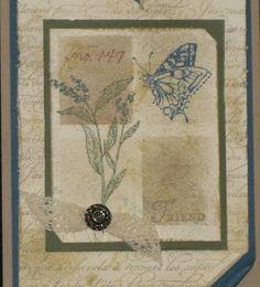 Vanessa's Card Studio: Now onto the cards....
