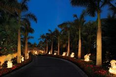 One&Only Palmilla - San Jose del Cabo, Los Cabos, Mexico - Luxury Hotel Vacation from Classic Vacations