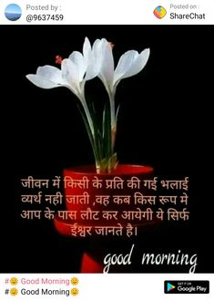 Miss Mom, Hindi Quotes Images, Good Morning Messages, Deep Thoughts, Good Morning Wishes