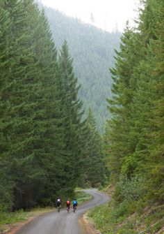 Five secluded cycling routes in Oregon showcase back-roads bliss