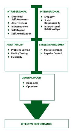 Emotional Intelligence Model by Reuven BarOn, PhD