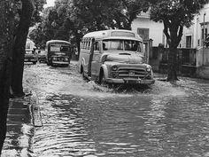 Jimi Hendrix, Old Trucks, Jeep, Black And White, Street, City, Vehicles, Vintage, School Buses