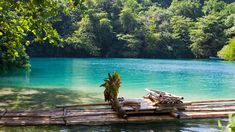 Una laguna única en Jamaica