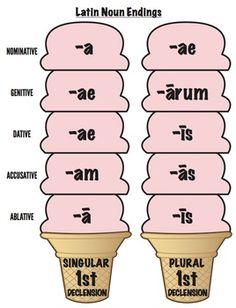 This is a set of the Latin noun endings, singular & plural through declensions in the design of ice cream cones intended for ages 4 and up. Latin Language Learning, Teaching Latin, Learning Languages Tips, Teaching English, Latin Phrases, Latin Words, Latin Grammar, French For Beginners, Singular And Plural