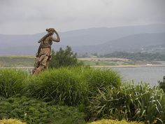 A statue looking out over Bantry Bay, from the Bantry House gardens in West Cork.
