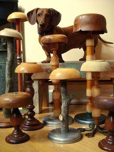 craft hat display, use plastic upside down bowls.