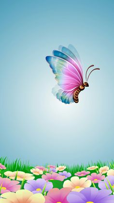 Colourful butterfly and flowers White Wallpaper For Iphone, Love Wallpaper, Cellphone Wallpaper, Nature Wallpaper, Butterfly Painting, Butterfly Wallpaper, Butterfly Art, Beautiful Flowers Wallpapers, Pretty Wallpapers
