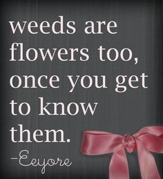 Weeds are flowers, too...  e.g.  'butter-fly' weed.  Every garden should have it.  :-)  And I do!